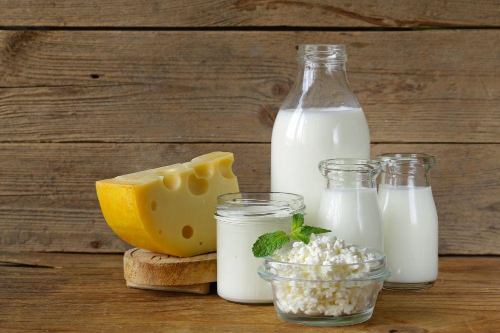 Sri Krishna Milk Diary